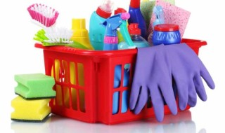 Make Your Own Cleaning Products | Young Finances